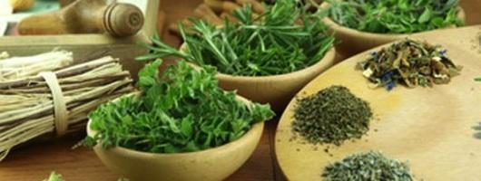 Alvásban segítő gyógynövények